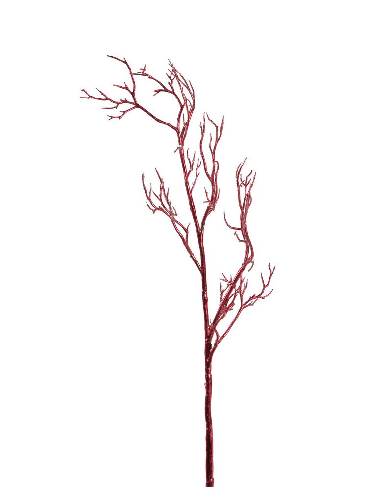 Twig Branch Hastes Ingarden