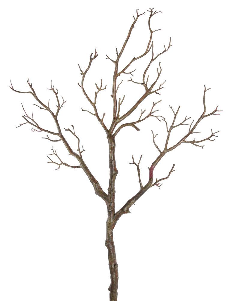 Tree Branch Hastes Ingarden